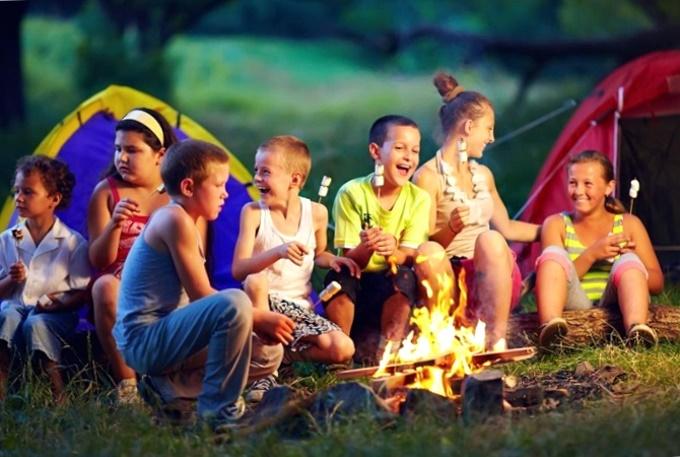 Ребенок, дети, путевка, льготник, процент, путевка, стоимость, инвалид, сирота, многодетный, родитель, лагерь, отдых, лето, оздоровление