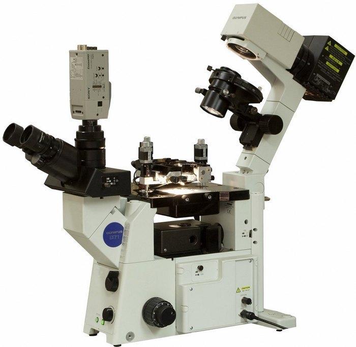 kupit-zondovyj-mikroskop-cherez-internet-magazin