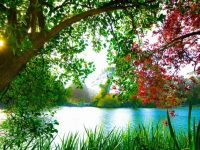 Квесты на природе как элемент тимбилдинга