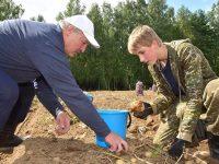 Лукашенко собрал 105 тонн картошки с 3 гектаров подворья