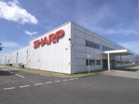 Масштабную реструктуризацию и сокращение сотрудников ожидают в Sharp