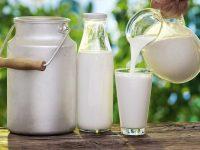 Рейтинг молока в Украине 2020-2021. Какое молоко лучше, как купить натуральное и качественное