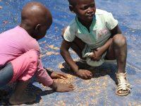 На Мадагаскаре начался массовый голод из-за засухи