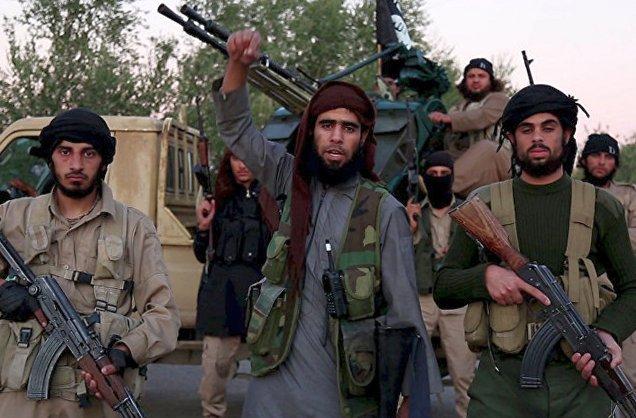 Наемники террористической организации ИГИЛ достаточно образованы, - Всемирный банк