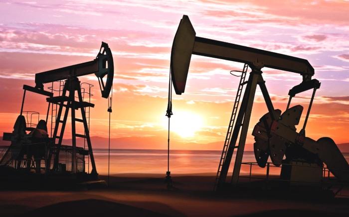 Ресурсы нефти в России составляют 350 миллиардов баррелей, - Минприроды