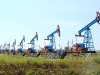 Запасов нефти в России хватит до 2044 года, – министр природных ресурсов Донской