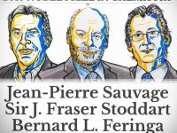 Нобелевская премия – 2016: лауреатами по химии стали Жан-Пьер Соваж, Фрэйзер Стоддарт и Бернард Феринга