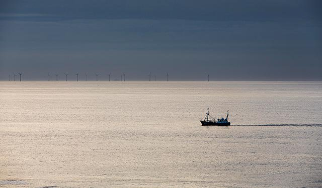 Обнаружен затонувший китайский траулер: Южная Корея ведет спасательные работы
