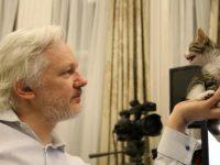 Основатель WikiLeaks Джулиан Ассанж написал странный зашифрованный твит