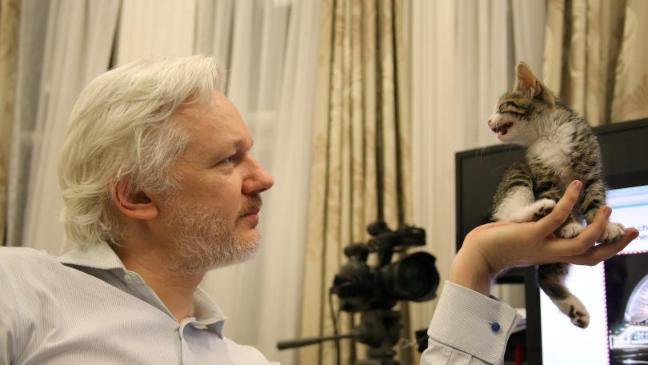 Основатель WikiLeaks Джулиан Ассанж написал твит с странным шифром
