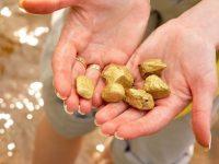Открыткрупнейший золотоносный рудник в Китае – запасы оценили в $22 миллиарда