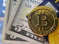 Почему бизнесмены все чаще выбирают Bitcoin