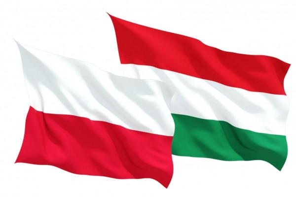 Впервые с 2012 года экономика Польши и Венгрии демонстрирует спад