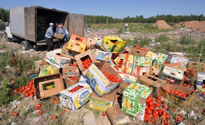 В России уничтожили 2,5 тысячи тонн санкционных продуктов: Россельхознадзор