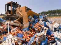 Турецкие продукты в России ждет участь европейских: будут уничтожать бульдозерами