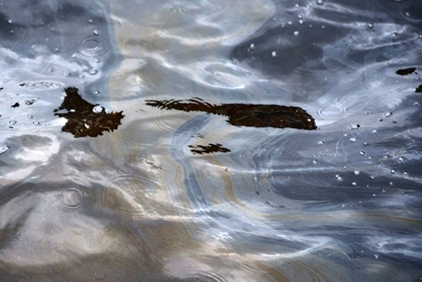 Произошла крупная утечка нефти в Северное море