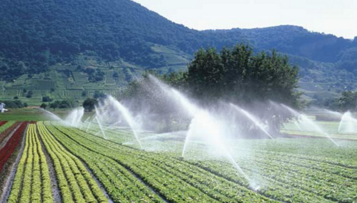 Промышленное выращивание продуктов питания истощает подземные источники воды, - ученые