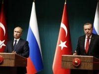 Российское правительство сняло запрет на ввоз цветов и овощей из Турции