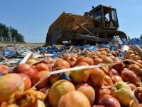 Россияне уничтожили фрукты, прибывшие из Беларуси
