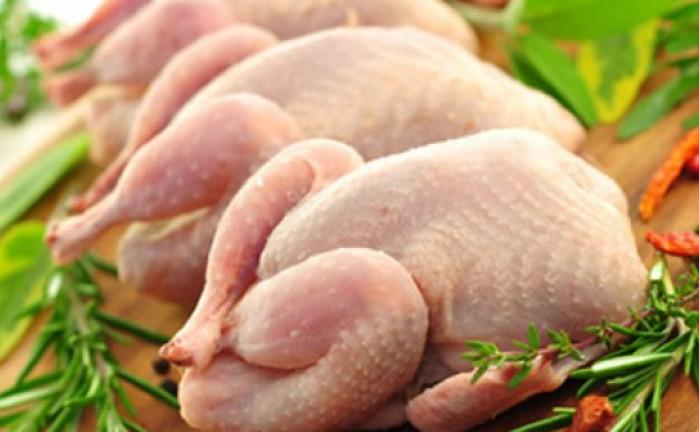 Саудовская Аравия отменила запрет на импорт украинской птицы