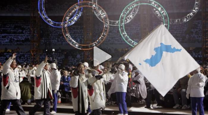 Северная и Южная Корея выступят под единым флагом на Зимних Олимпийских играх