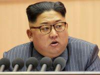 Северокорейский перебежчик имеет в крови антитела против сибирской язвы, – исследование