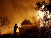 Сильный лесной пожар повредил десятки домов в Греции