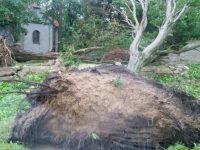Смертоносный ураган в Польше: пять человек погибло, полмиллиона осталось без электричества