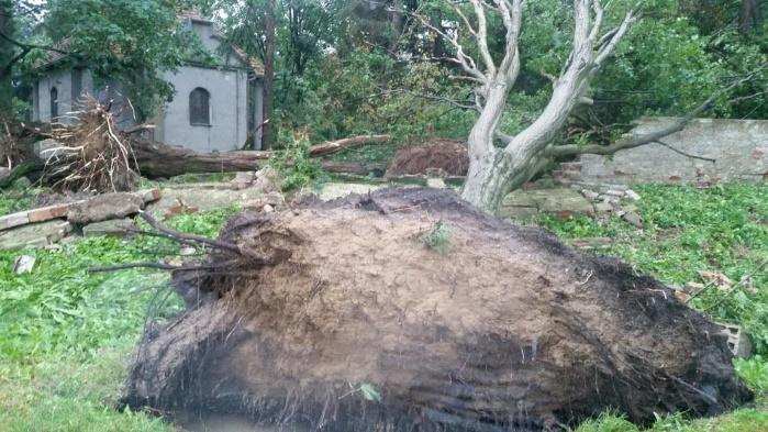 Смертоносный ураган в Польше: пять человек погибло, полмиллиона остались без электричества