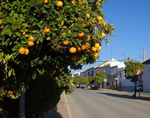 Мариналеда - утопический город в Испании, где нет полиции, безработицы и преступности
