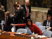 США и Россия поспорили из-за Ирана в Совбезе ООН