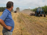 Стала известна сумма привлеченных средств аграриями за время работы инструмента аграрных расписок