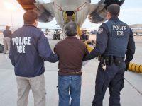 Стоимостьдепортации одного нелегала из США