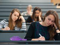 Страховой стаж: засчитывается ли обучение в техникуме, училище и институте