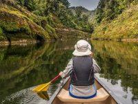 Суд Новой Зеландии признал реку живым организмом