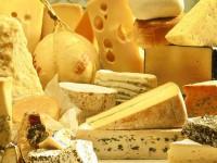 В России принялись уничтожать санкционные продукты – начали с 10 тонн сыра