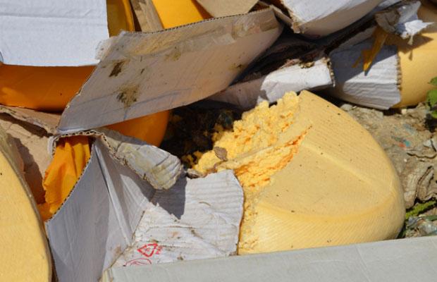 Фото и видео уничтожения санкционного сыра в Белгороде