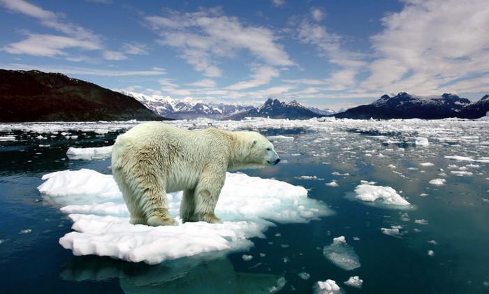 """Температура на Северном полюсе проходит """"горячую волну"""""""