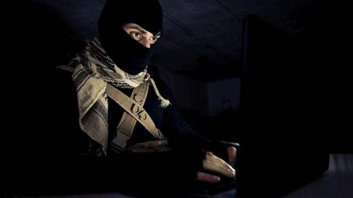 Террористы используют Bitcoin и PayPal, — AML