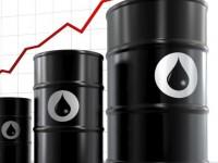 Динамика цен на дизельное топливо