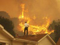 Трамп в Калифорнии ввел режим стихийного бедствия