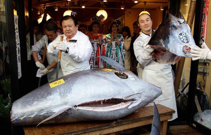 На аукционе в Японии продана рыба весом в 200 килограмм