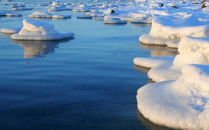 Ученые из Manhattan Project предложили установить морозильные установки в Арктике, чтобы предотвратить быстрое таяние льдов