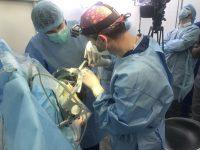 Украинскими хирургами сделана уникальная операция по удалению опухоли