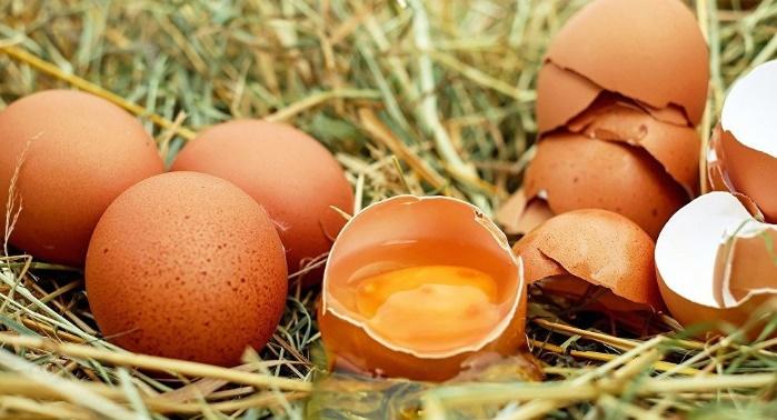 В Евросоюзе из магазинов отзывают миллионы яиц