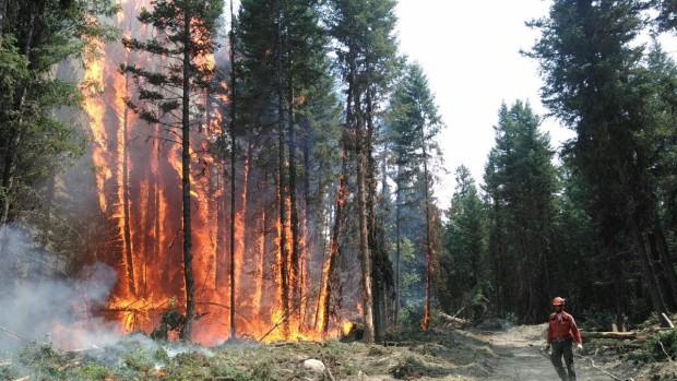 В Канаде самый большой пожар за всю историю наблюдений