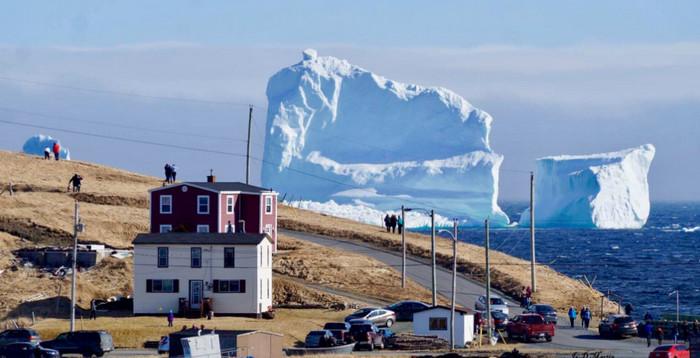 В Канаде туристы наблюдают за гигантскими айсбергами