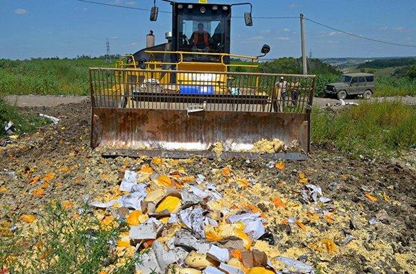 В России уже уничтожили 9 тыс. тонн санкционных продуктов
