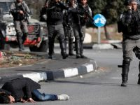В столкновении израильских военных и палестинцев ранено более 150 человек