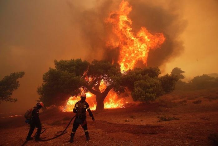 В Украине объявлен наивысший уровень пожарной опасности, —ГСЧС